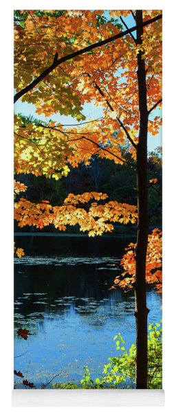 Foliage By The Nashua River Yoga Mat