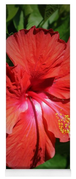 For The Love Of Hibiscus Yoga Mat