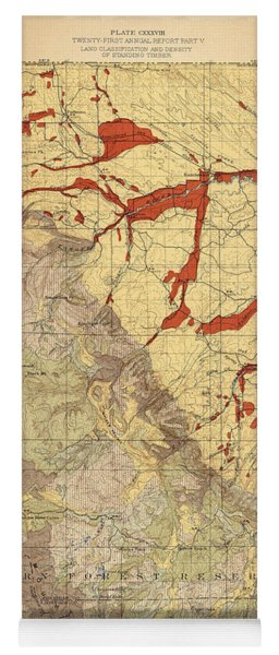 Forest Cover Map 1886-87 - Dayton Quadrangle - Wyoming - Geological Map Yoga Mat