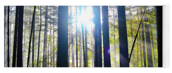 Forest Light Rays Yoga Mat