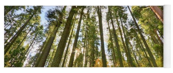 Forest Of Light Yoga Mat