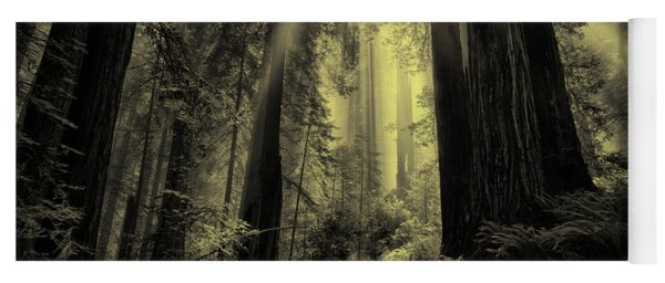 Forest Sunbeams Black And White Yoga Mat