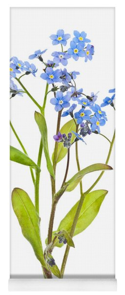 Forget-me-not Flowers On White Yoga Mat
