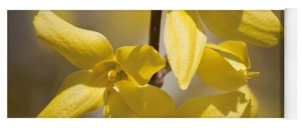 Forsythia Blossoms Squared Yoga Mat