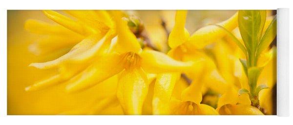 Forsythia Yellow Flowers Yoga Mat