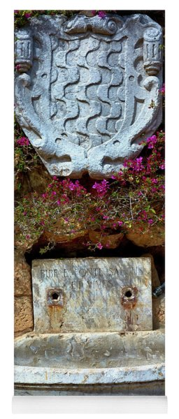 Yoga Mat featuring the photograph Fountains And Flowers At The Roman Walls In Tarragona by Eduardo Jose Accorinti