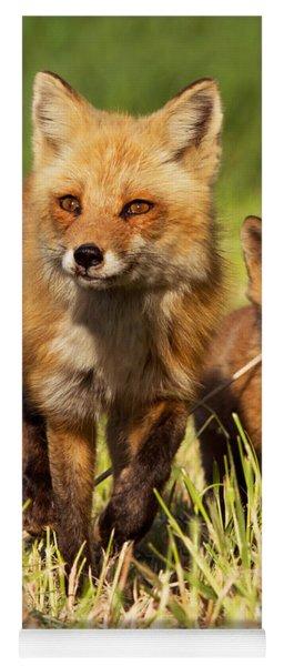 Fox Family Yoga Mat