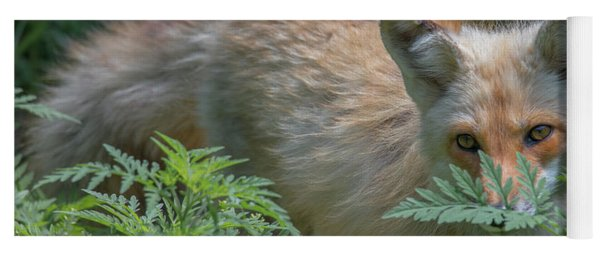 Fox In The Ferns Yoga Mat