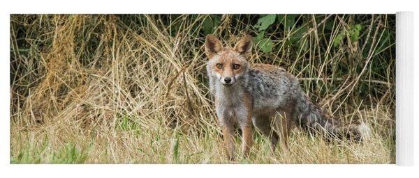 Fox In The Woods Yoga Mat