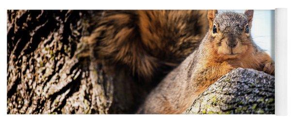 Fox Squirrel Watching Me Yoga Mat