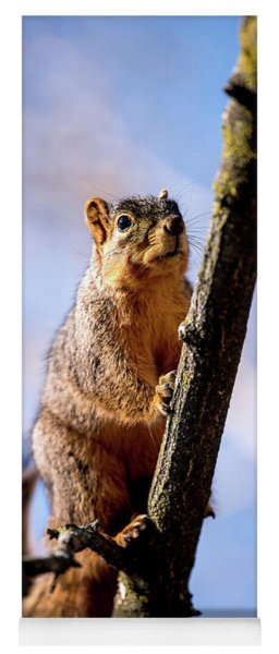 Fox Squirrel's Last Look Yoga Mat