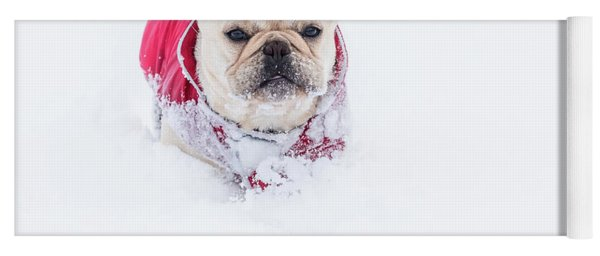 Frenchie In The Snow Yoga Mat