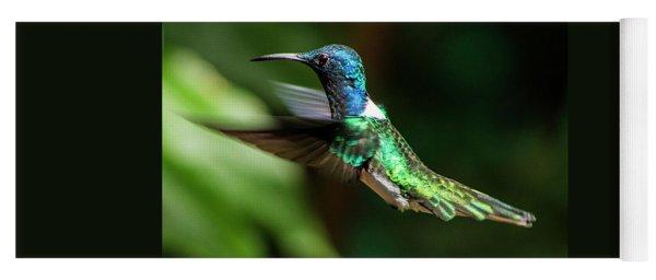 Frequent Flyer, Mindo Cloud Forest, Ecuador Yoga Mat