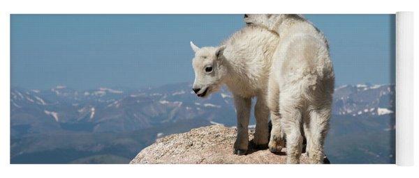 Frisky Mountain Goat Babies Yoga Mat