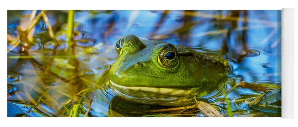 Frog In My Pond Yoga Mat