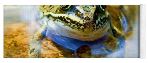 Frog In Pond Yoga Mat