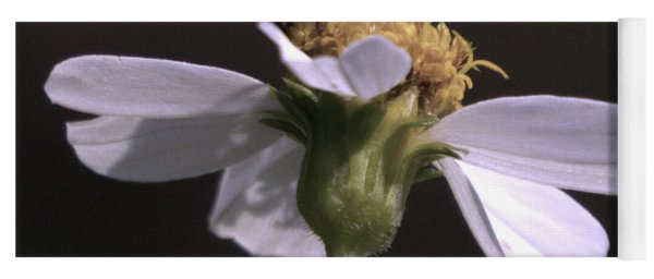 Frontal View Of A Bee On A Flower Yoga Mat