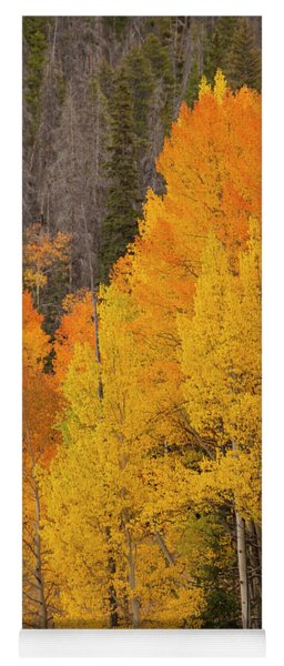 Fall  Color Yoga Mat