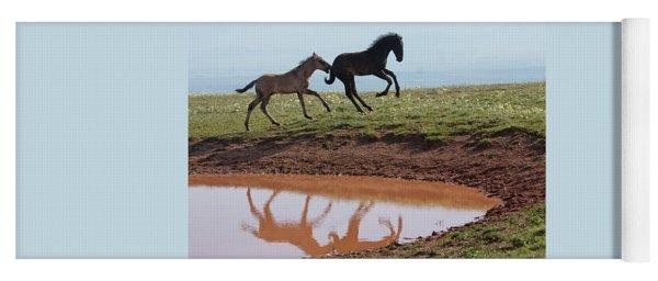 Fun In The Rockies- Wild Horse Foals Yoga Mat