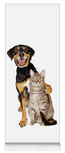 Funny Photo Of Dog With Arm Around Cat Yoga Mat