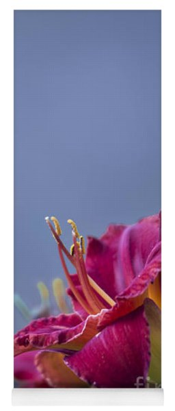 Fuchsia On Slate Yoga Mat