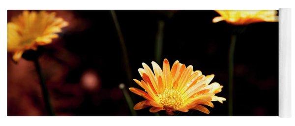 Yoga Mat featuring the photograph Garden Light by Eric Christopher Jackson