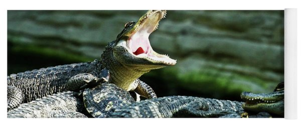 Gator Yawn Yoga Mat