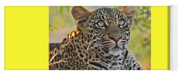 Gazing Leopard Yoga Mat
