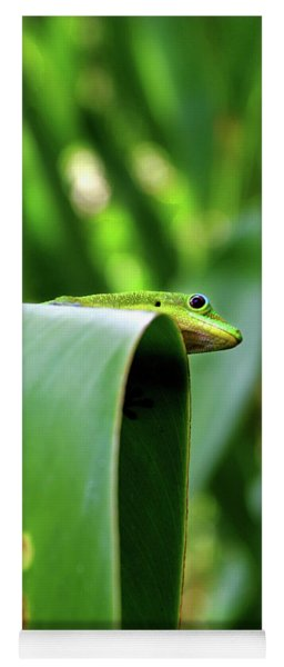 Geckooverlook Yoga Mat