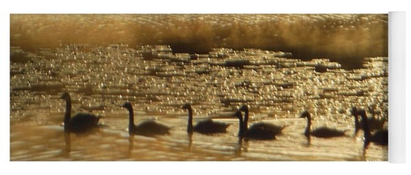 Geese On Golden Pond Yoga Mat