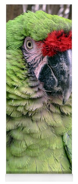 George The Parrot Yoga Mat