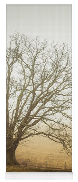 Tree In Fog - Blue Ridge Parkway Yoga Mat