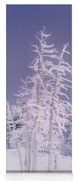 Ghost Trees Yellowstone National Park Yoga Mat