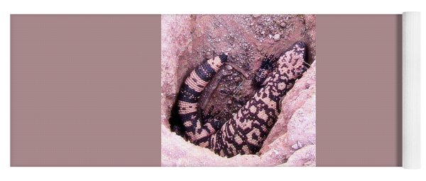 Gila Monster - Number One Yoga Mat