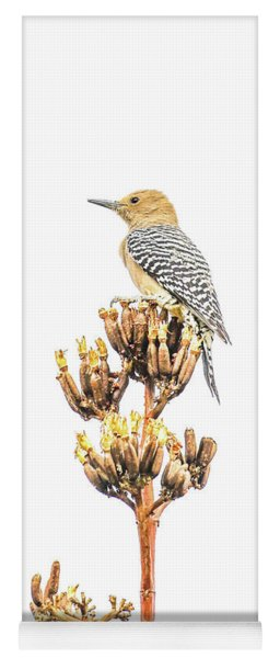 Gila Woodpecker Yoga Mat