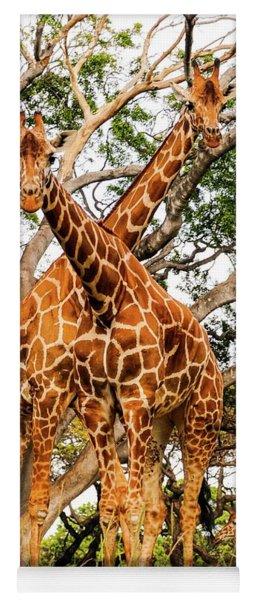 Giraffe's Looking Yoga Mat
