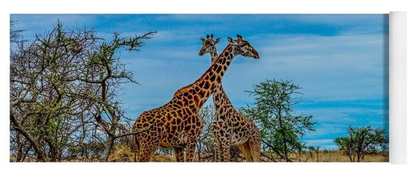 Giraffes On The Serengeti Yoga Mat