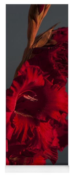 Gladiolus Against A Dark Cloud Yoga Mat