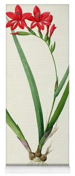 Gladiolus Cardinalis Yoga Mat