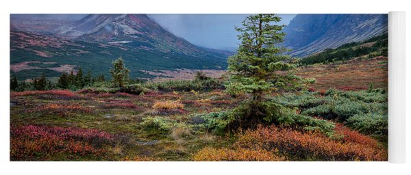 Glen Alps In The Autumn Rain Yoga Mat