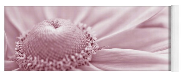 Gloriosa Daisy In Pink  Yoga Mat