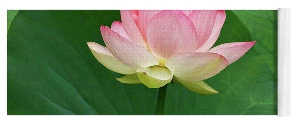 Glorious Beauty Of The Lotus Yoga Mat