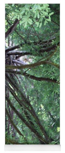 Glorious Tree  Yoga Mat