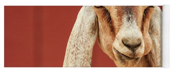 Goat With An Attitude Yoga Mat