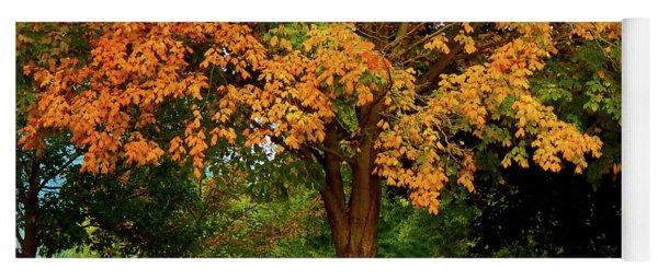 Golden Maple Yoga Mat
