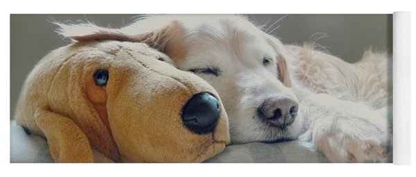 Golden Retriever Dog Sleeping With My Friend Yoga Mat