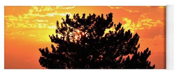 Golden Sunset Behind Pine Tree Yoga Mat