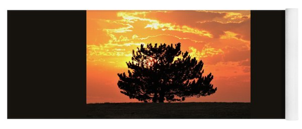 Golden Sunset Behind Pine Tree Yoga Mat