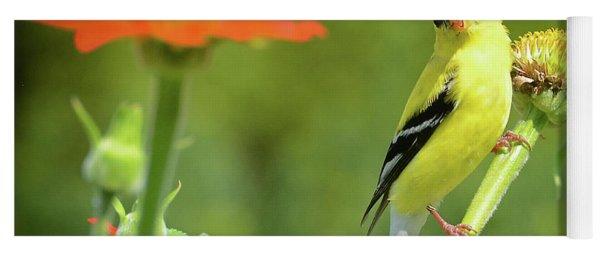 Goldfinch Feeding In A Garden Yoga Mat