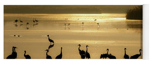 Good Morning Chula Lake Yoga Mat